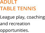 adult table tennis