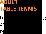 adult table tennis